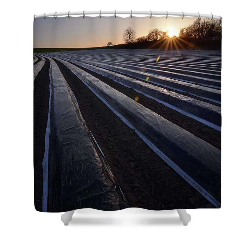Tranquility Shower Curtain featuring the photograph Asparagus Field by Andy Brandl