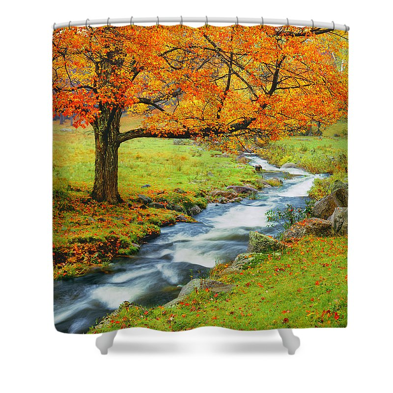 Scenics Shower Curtain featuring the photograph Autumn In Vermont G by Ron thomas