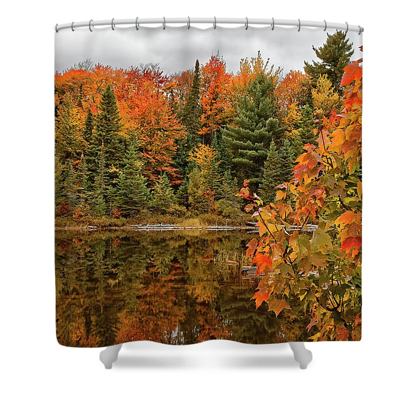 Algonquin Provincial Park Shower Curtain featuring the photograph Autumn Reflections by Phill Doherty