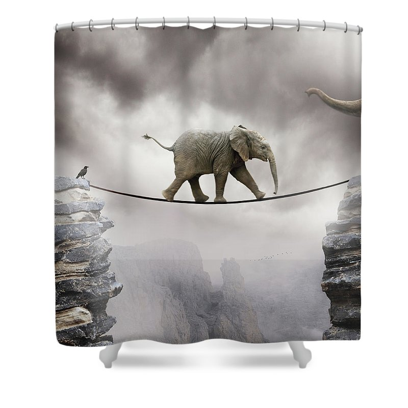 Animal Themes Shower Curtain featuring the photograph Baby Elephant by By Sigi Kolbe