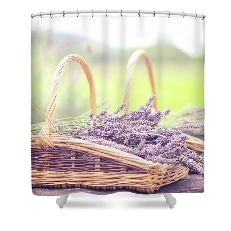 Dorset Shower Curtain featuring the photograph Baskets Of Lavender by Sasha Bell