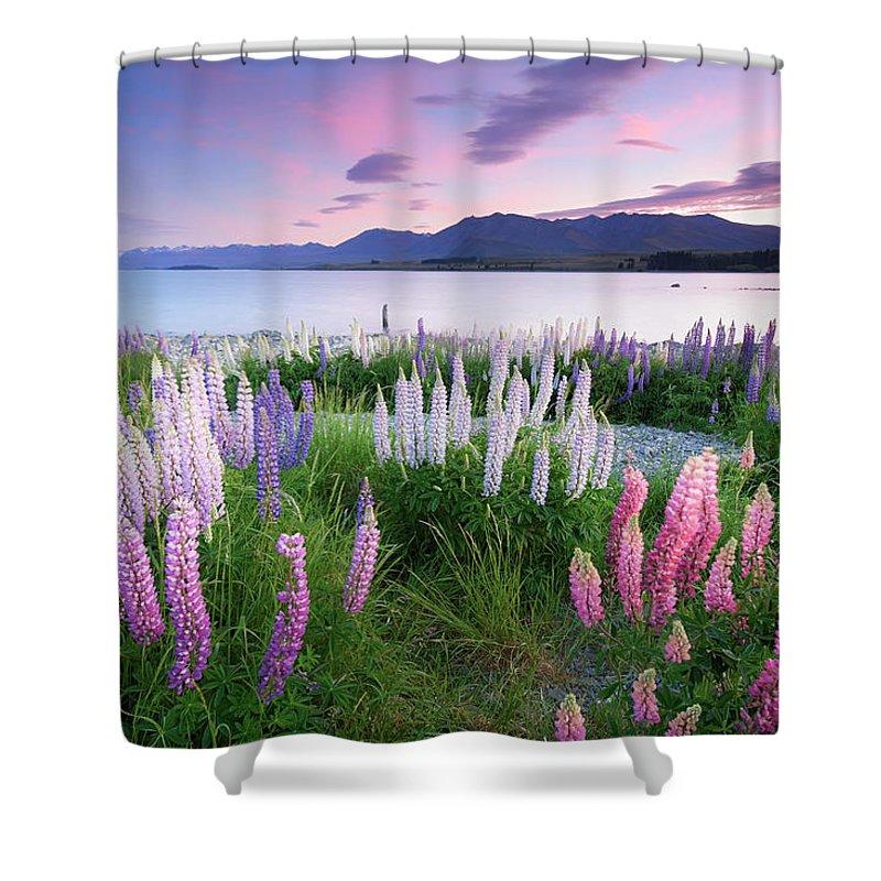 Dawn Shower Curtain featuring the photograph Berry Dawn At Lake Tekapo, New Zealand by Atomiczen