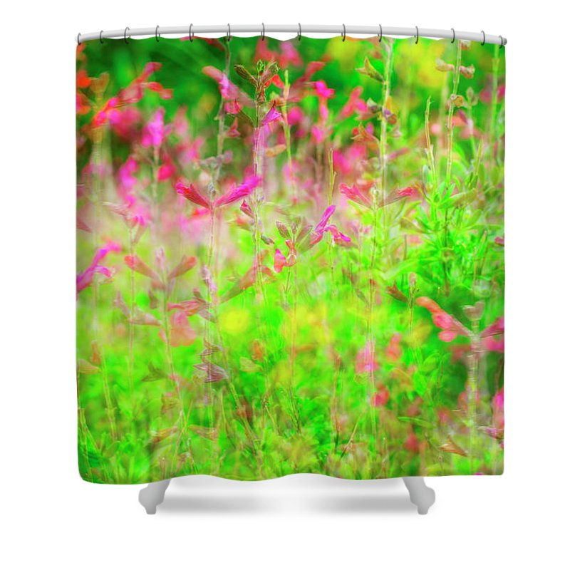 Landscape Shower Curtain featuring the photograph Blowing In The Spring Wind by Toni Hopper