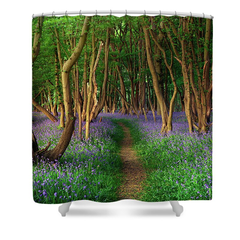 Tranquility Shower Curtain featuring the photograph Bluebells In Sussex by Photography By Sam C Moore