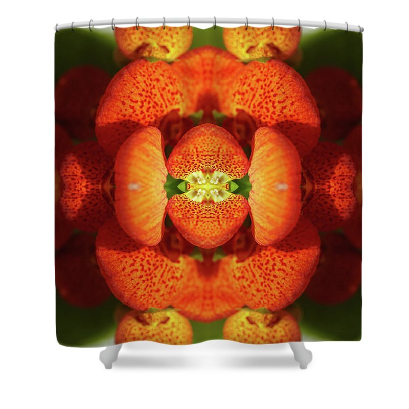 Tranquility Shower Curtain featuring the photograph Calceolaria Flower by Silvia Otte