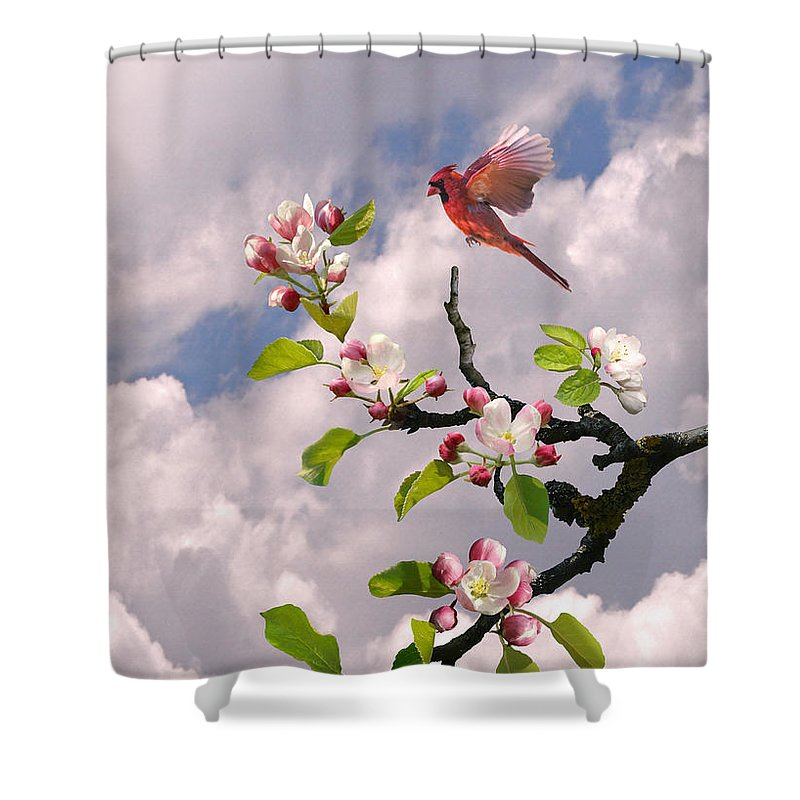 Apple Blossom Shower Curtain featuring the digital art Cardinal In Apple Tree by Spadecaller