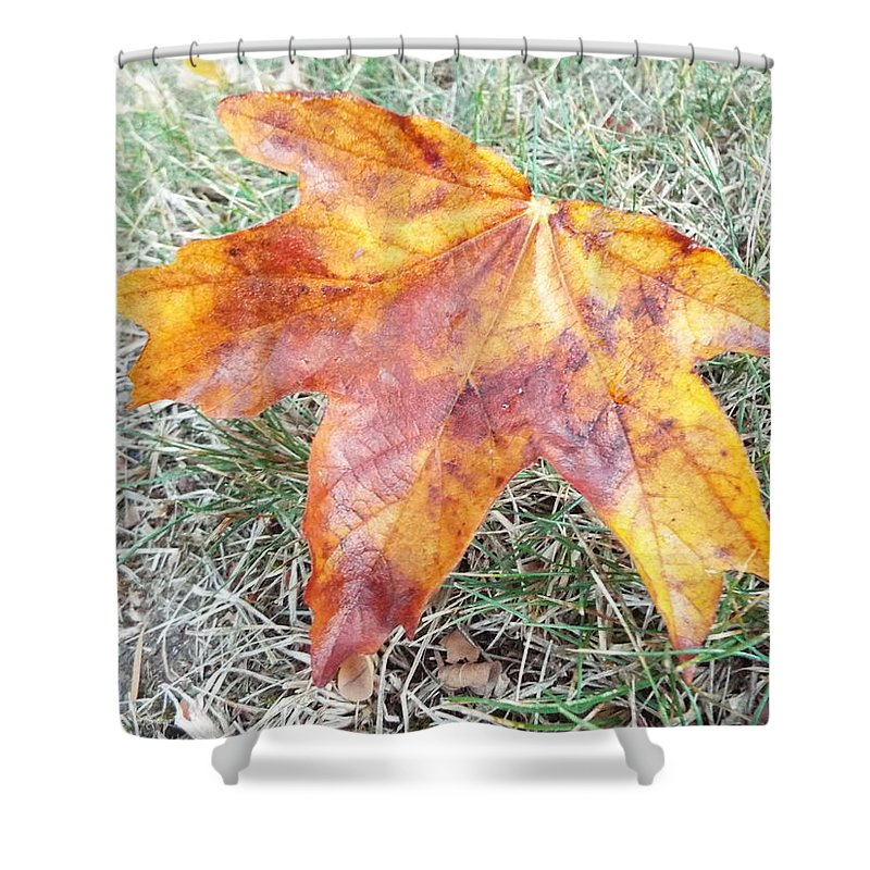 Shower Curtain featuring the photograph Change Of Seasons by James Harris
