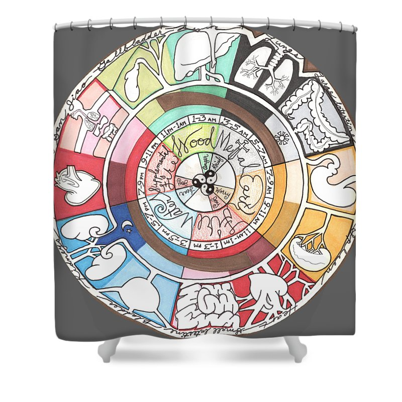 Chinese Shower Curtain featuring the drawing Chinese Body Clock by Kate Fortin