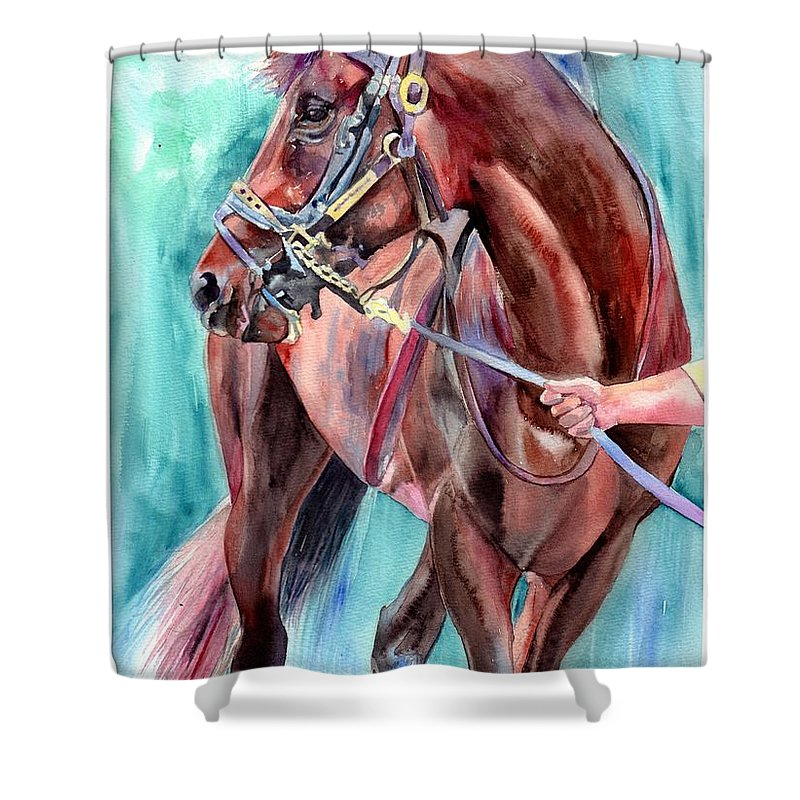 Watercolor Shower Curtain featuring the painting Classical Horse Portrait by Suzann Sines