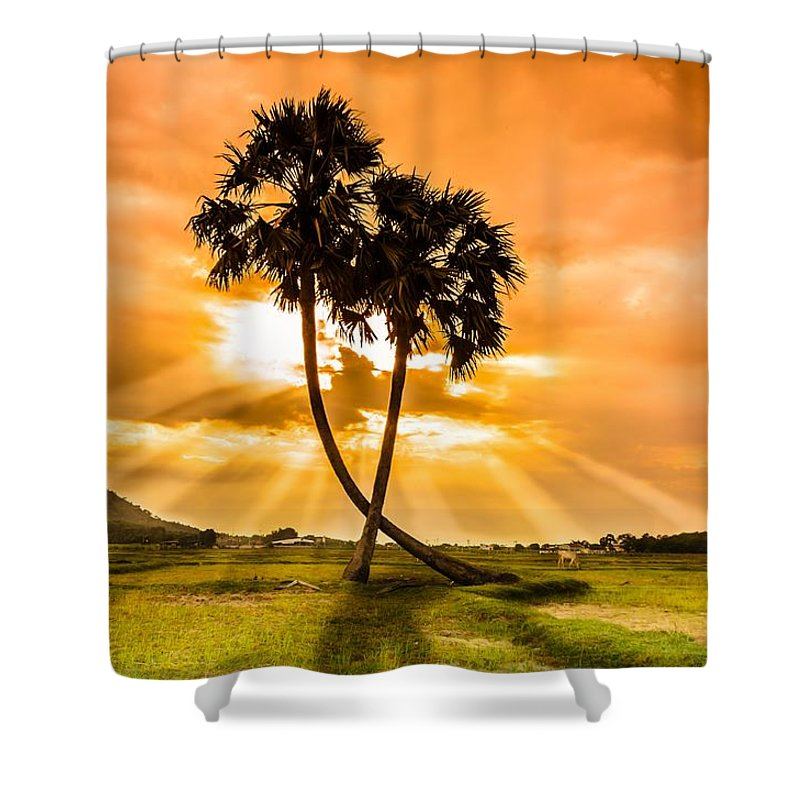 Love Shower Curtain featuring the photograph Couple by Lam Loi