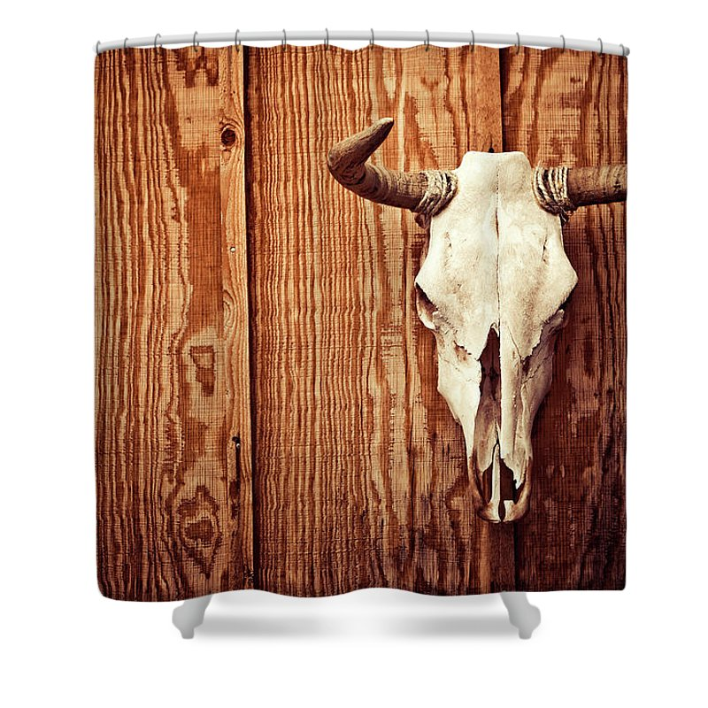 Animal Skull Shower Curtain featuring the photograph Cow Skull by Thepalmer