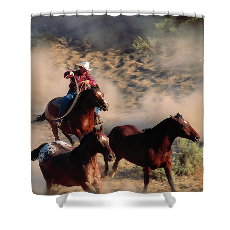 Horse Shower Curtain featuring the photograph Cowboy Roping Horses by John Luke