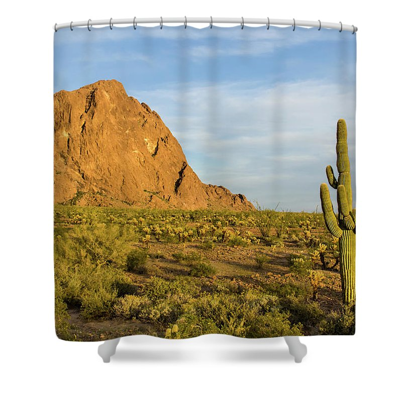Geology Shower Curtain featuring the photograph Desert Mountain Cactus Classic by Photo By Chris Lemmen Www.chrislemmenphotography.ca