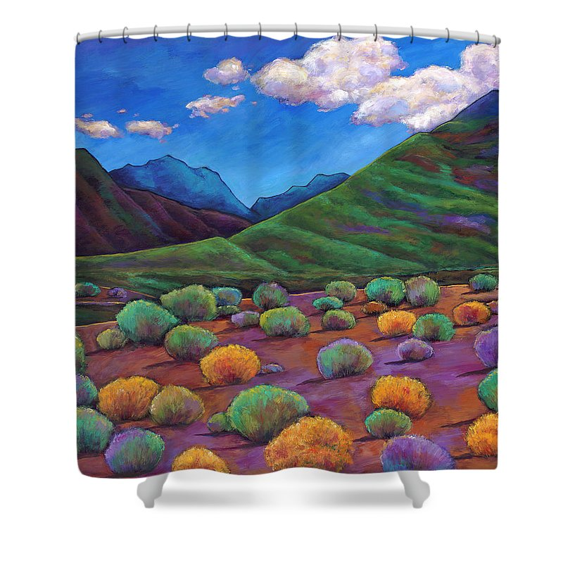 Arizona Shower Curtain featuring the painting Desert Valley by Johnathan Harris