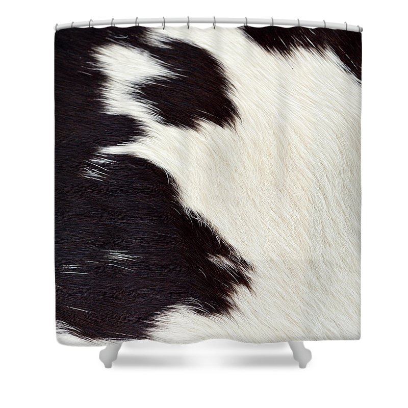 Animal Skin Shower Curtain featuring the photograph Designer Fur by Digiclicks