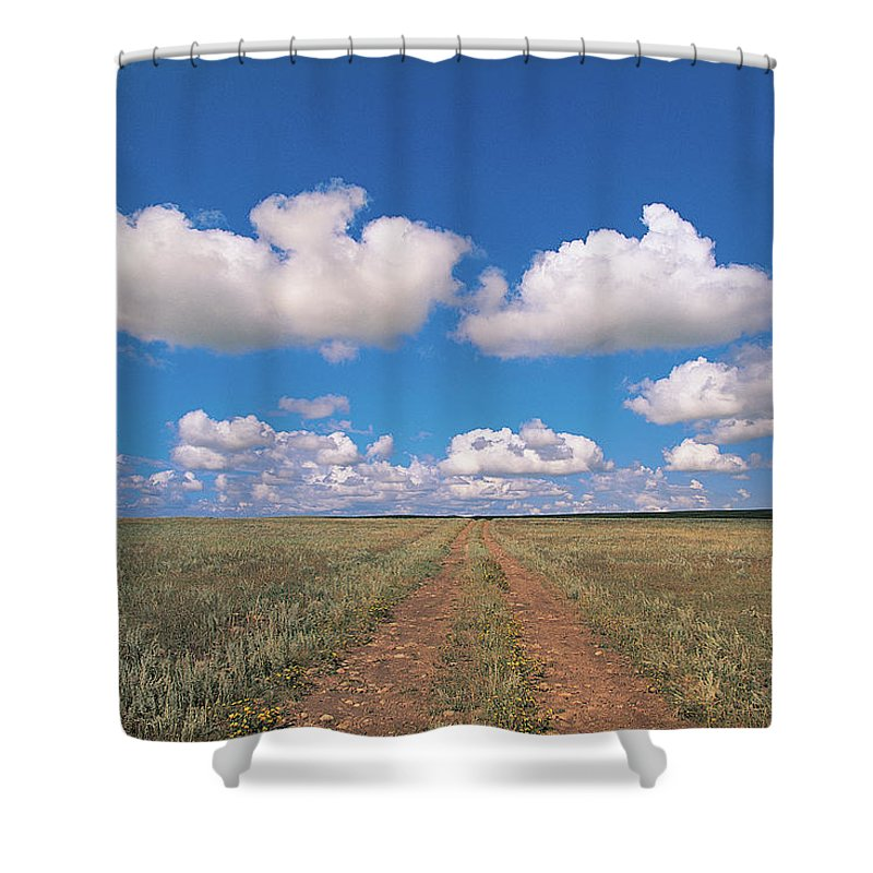 Grainy Shower Curtain featuring the photograph Dirt Road On Prairie With Cumulus Sky by Mimotito