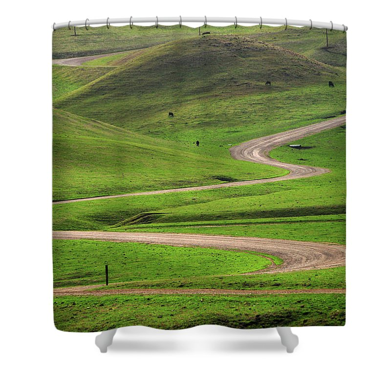 Tranquility Shower Curtain featuring the photograph Dirt Road Through Green Hills by Mitch Diamond