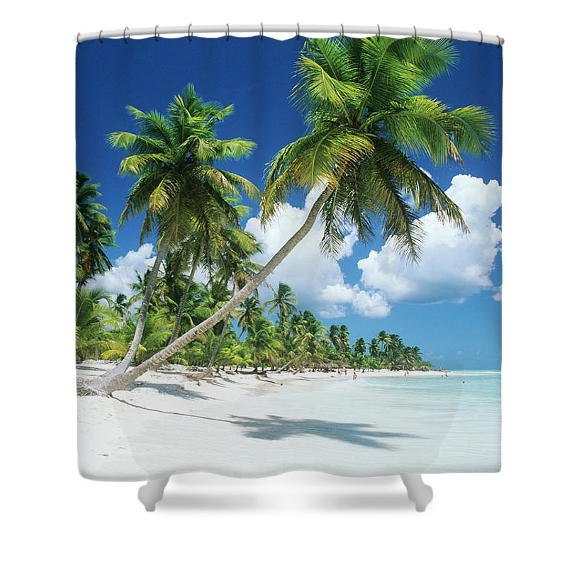 Scenics Shower Curtain featuring the photograph Dominican Republic, Saona Island, Palm by Stefano Stefani