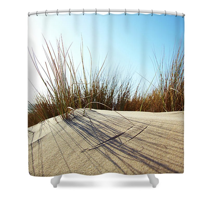 Tranquility Shower Curtain featuring the photograph Dune Grass On A Sand Dune At The Beach by Thomas Northcut