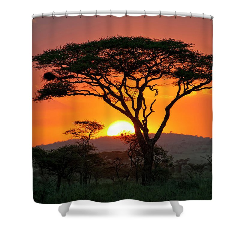 Scenics Shower Curtain featuring the photograph End Of A Safari-day In The Serengeti by Guenterguni