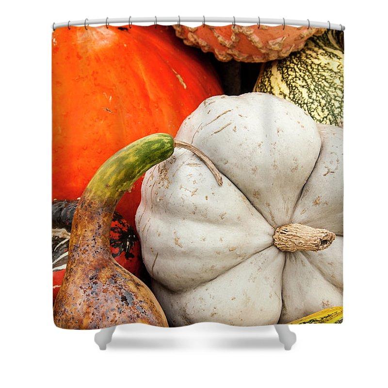 Season Shower Curtain featuring the photograph Fall Season Squash And Pumpkins by M Timothy O'keefe