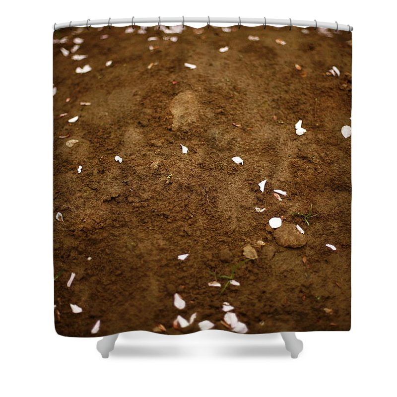Outdoors Shower Curtain featuring the photograph Fallen Apple Blossoms On Mound Of Soil by Matt Niebuhr