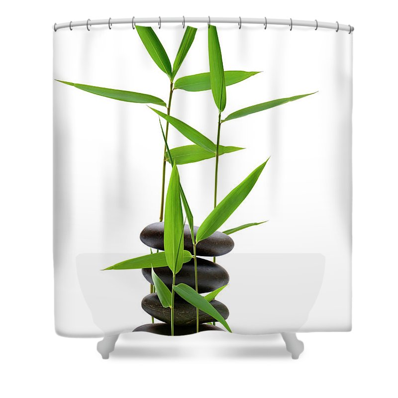 Bamboo Shower Curtain featuring the photograph Feng Shui Bamboo by Pixhook