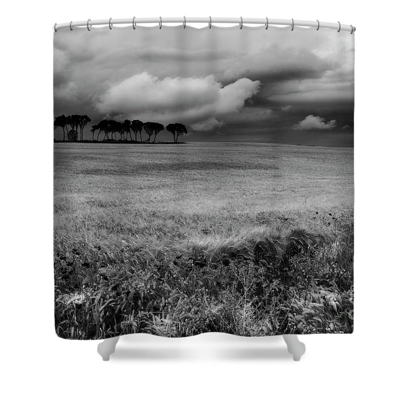 Nature Shower Curtain featuring the photograph Field With Poppies And Trees. B And W by Vicente Sargues