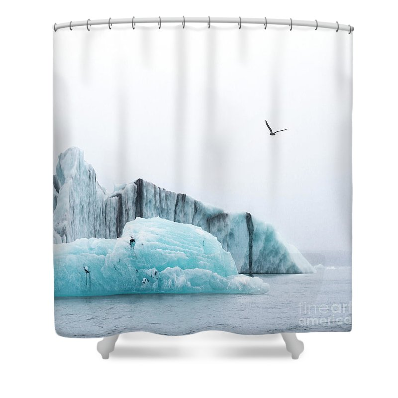 Kremsdorf Shower Curtain featuring the photograph Floating Giants by Evelina Kremsdorf