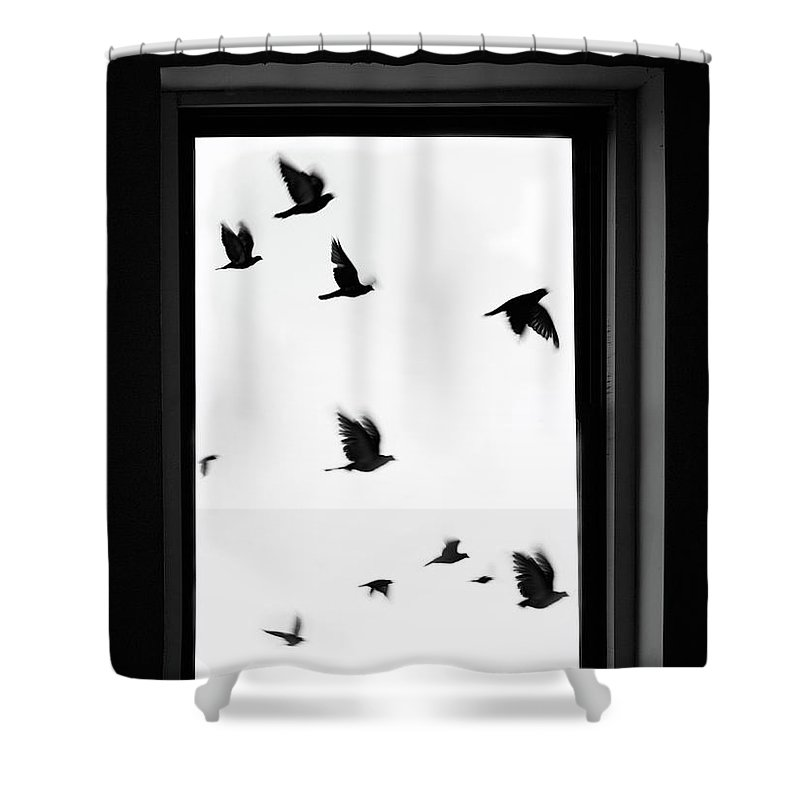 Spooky Shower Curtain featuring the photograph Flock Of Crows Seen Through A Window by Grant Faint