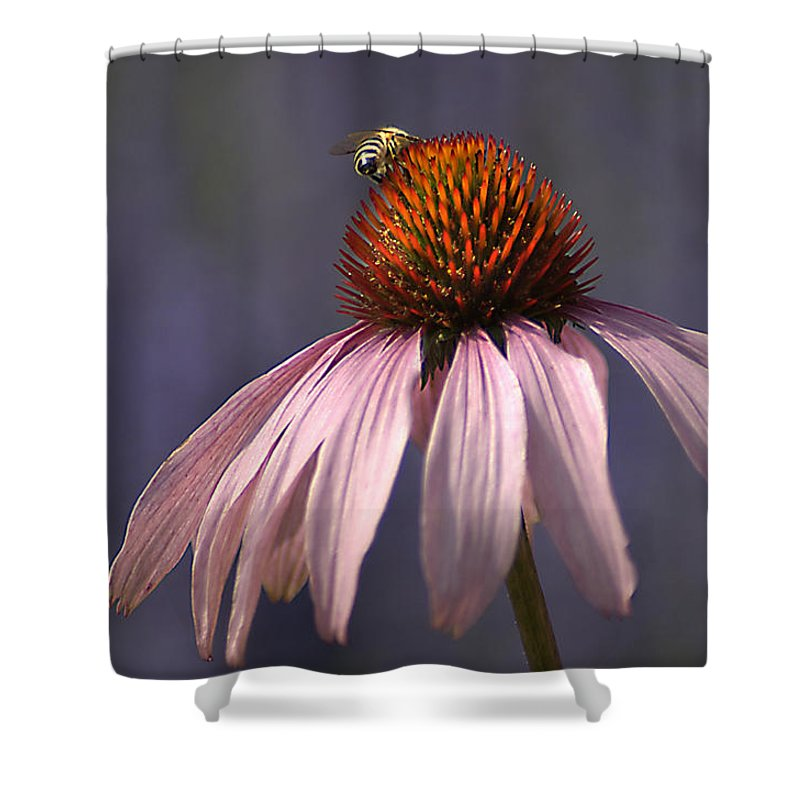 Insect Shower Curtain featuring the photograph Flower And Bee by Bob Van Den Berg Photography