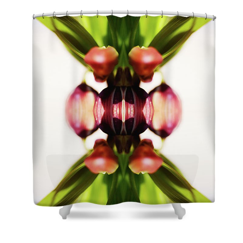 Bud Shower Curtain featuring the photograph Fritillaria Flower by Silvia Otte