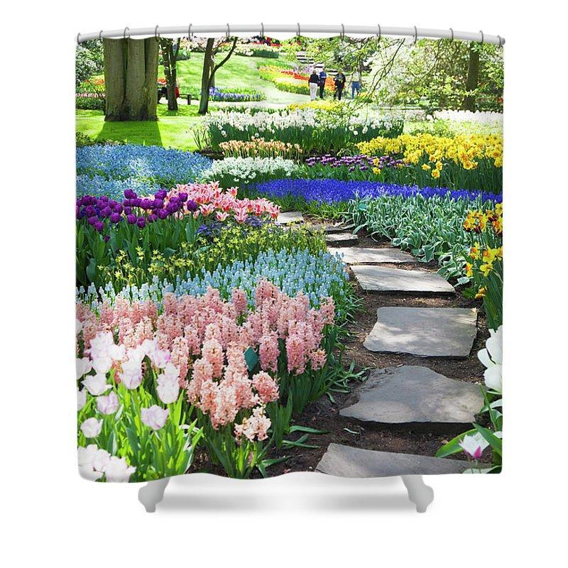 Flowerbed Shower Curtain featuring the photograph Garden Flowers 53 Xxxl by Lya cattel