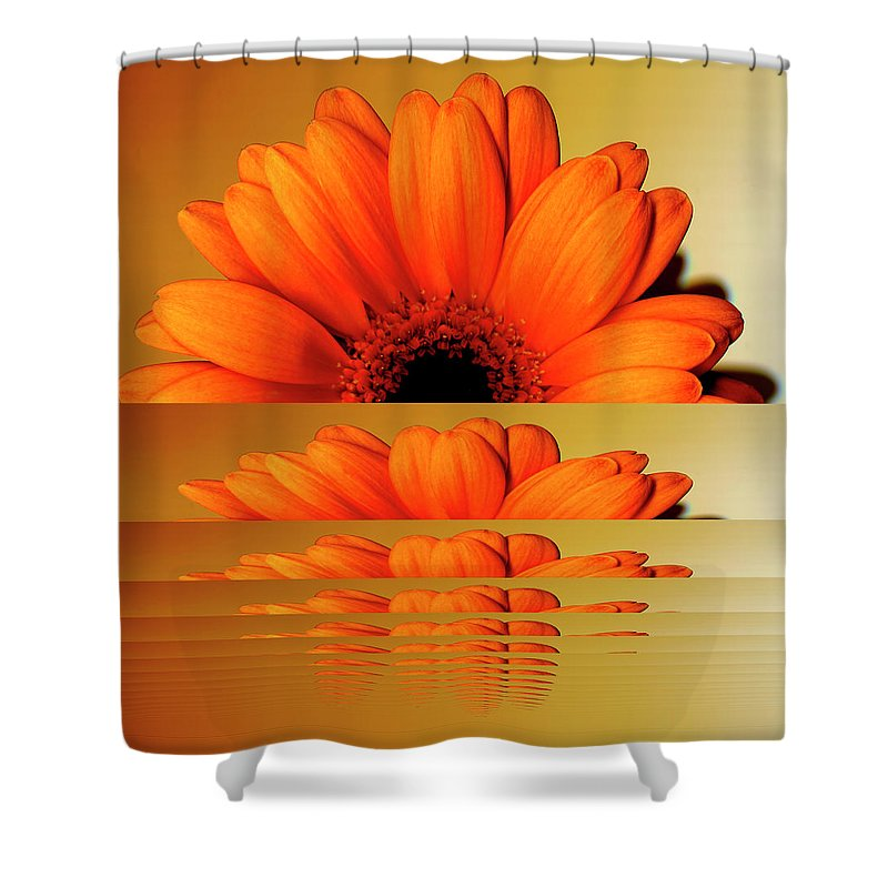 Orange Color Shower Curtain featuring the digital art Gerbera Flower As Rising Sun by Eversofine