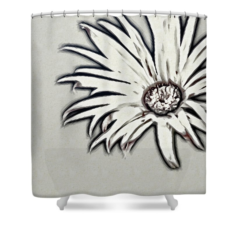 Rockville Shower Curtain featuring the photograph Gerbera Flower Shape by Maria Mosolova