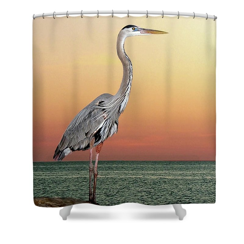 Scenics Shower Curtain featuring the photograph Great Blue Heron In Seaside Sunset by Melinda Moore