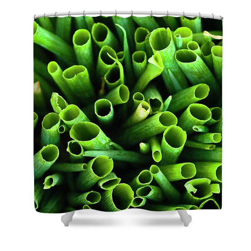 Large Group Of Objects Shower Curtain featuring the photograph Green Onions by By Ken Ilio