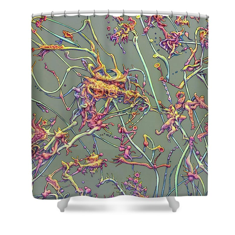 Growth Shower Curtain featuring the painting Growth by James W Johnson