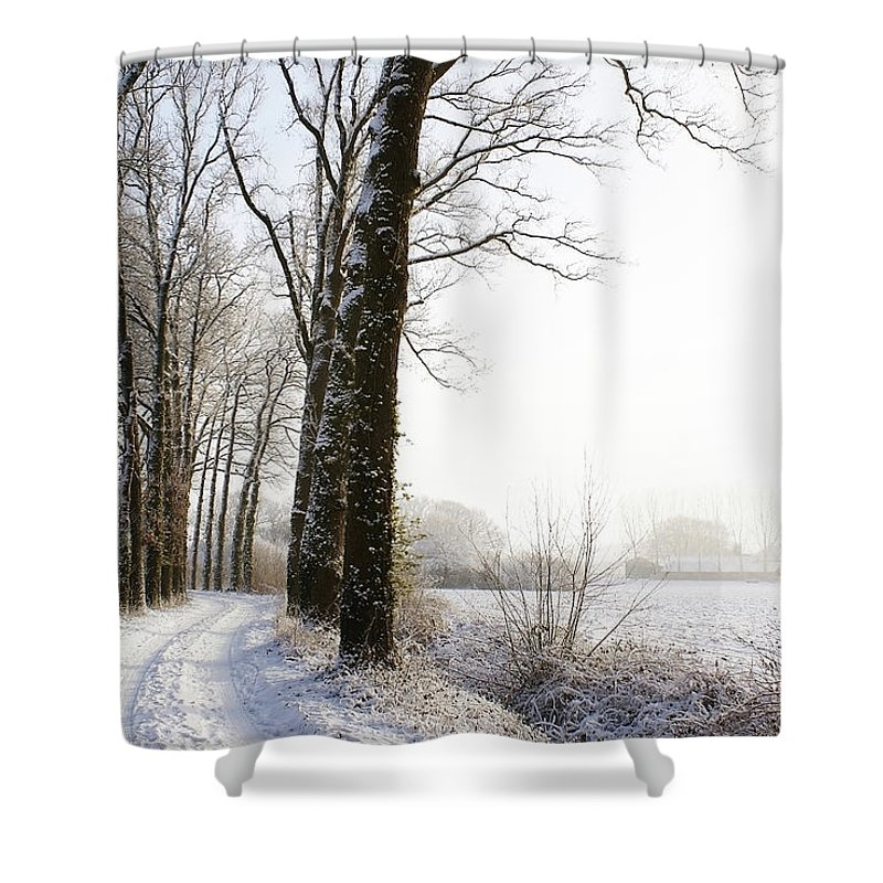 Tranquility Shower Curtain featuring the photograph Half Black, Half White by Bob Van Den Berg Photography