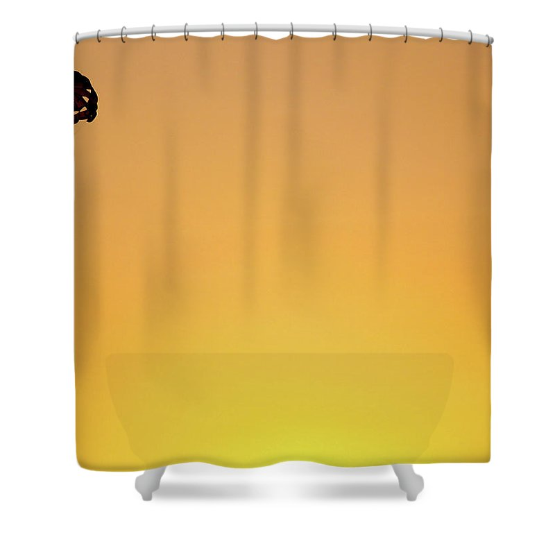 Parachuting Shower Curtain featuring the photograph High Life, Again by Jokin B.