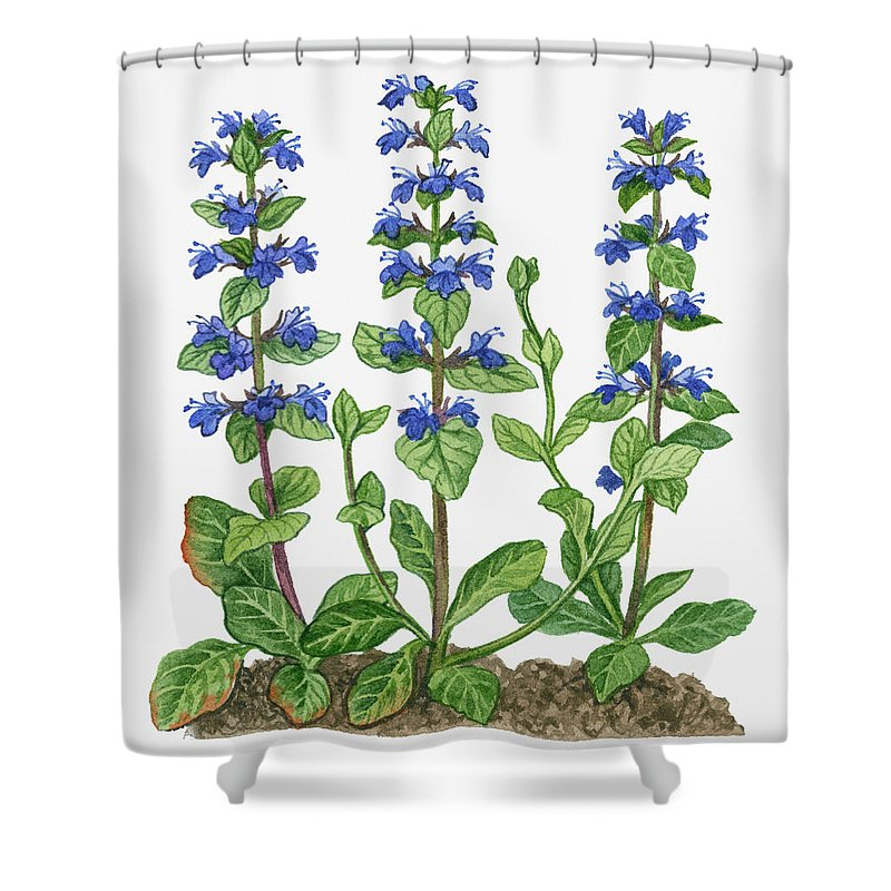 Watercolor Painting Shower Curtain featuring the digital art Illustration Of Ajuga Reptans Blue by Michelle Ross