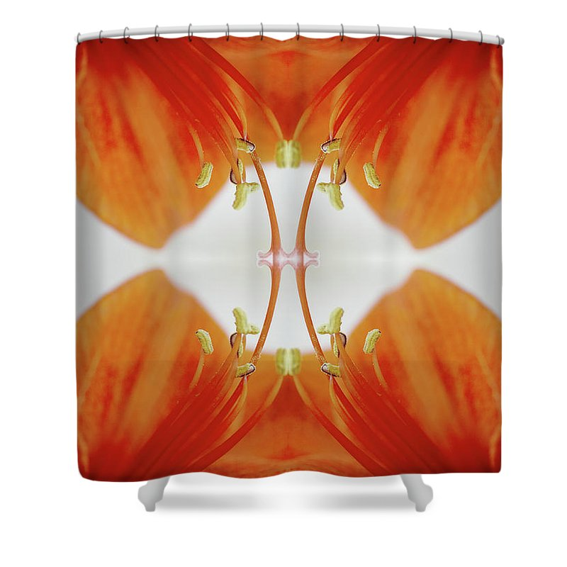 Tranquility Shower Curtain featuring the photograph Inside An Amaryllis Flower by Silvia Otte
