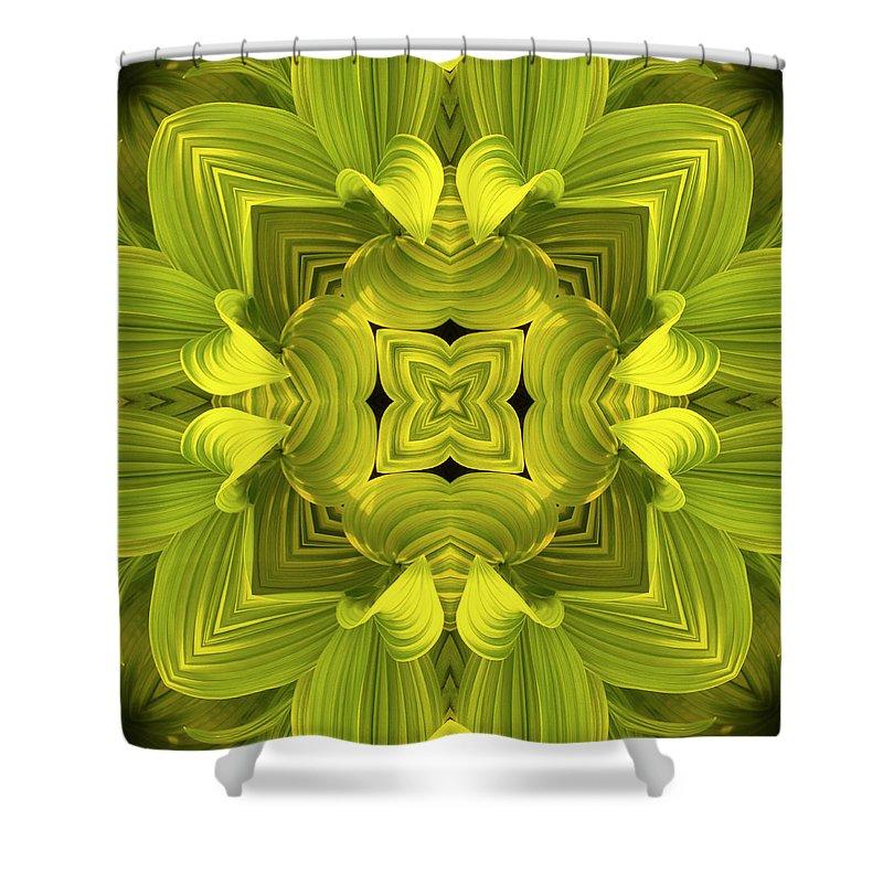 Mandala Shower Curtain featuring the photograph Leafy Mandala by Steve Satushek