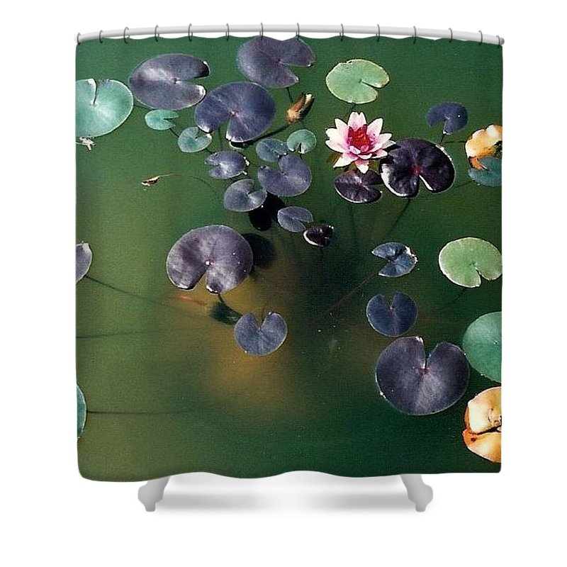 1980-1989 Shower Curtain featuring the photograph Lillypad by Margherita Wohletz
