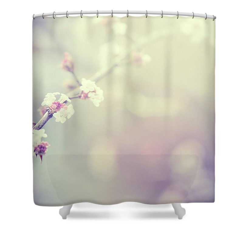 Silence Shower Curtain featuring the photograph Little Flowers In Winter by Rike