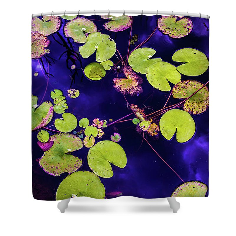 Nature Photography Shower Curtain featuring the photograph Little Pac Mans by Az Jackson