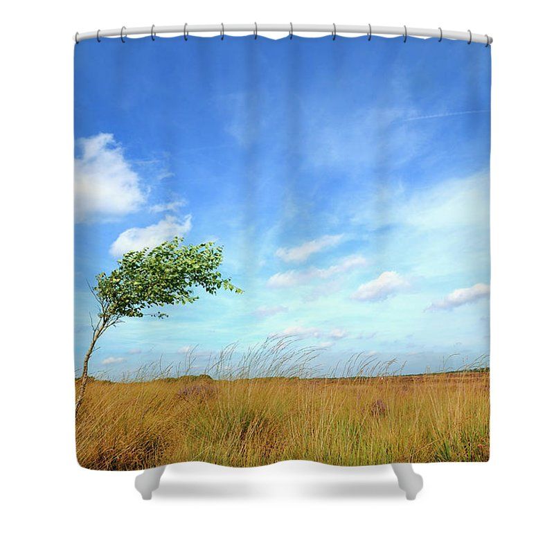 Scenics Shower Curtain featuring the photograph Lonesome Tree Swept By The Wind by Nikitje