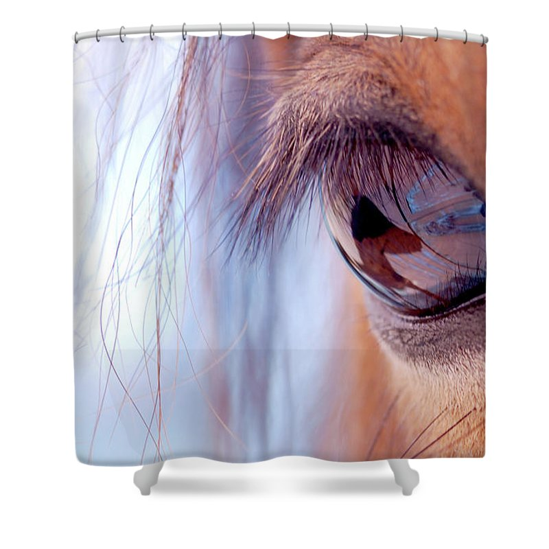 Horse Shower Curtain featuring the photograph Macro Of Horse Eye by Anne Louise Macdonald Of Hug A Horse Farm