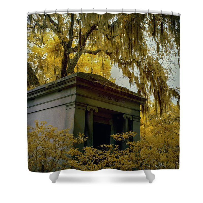 Cemetary Shower Curtain featuring the photograph Mausoleum In Georgia by Jon Glaser