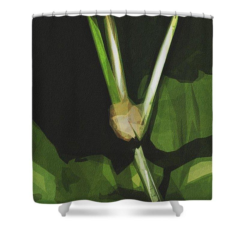 Mexican Bean Beetle Shower Curtains